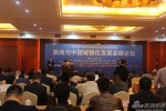 2013徽商与中国城镇化发展高峰论坛在芜湖举行